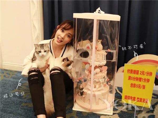 彭小苒携猫营业(图片来源于彭小苒微博)